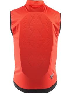 Защита спины Dainese Scarabeo Flex Lite