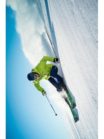 Горные лыжи Fischer Progressor F19 Ti без креплений 15/16