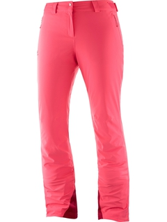 Брюки Salomon Icemania Pant W